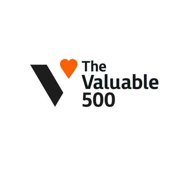【ロゴ】The Valuable 500